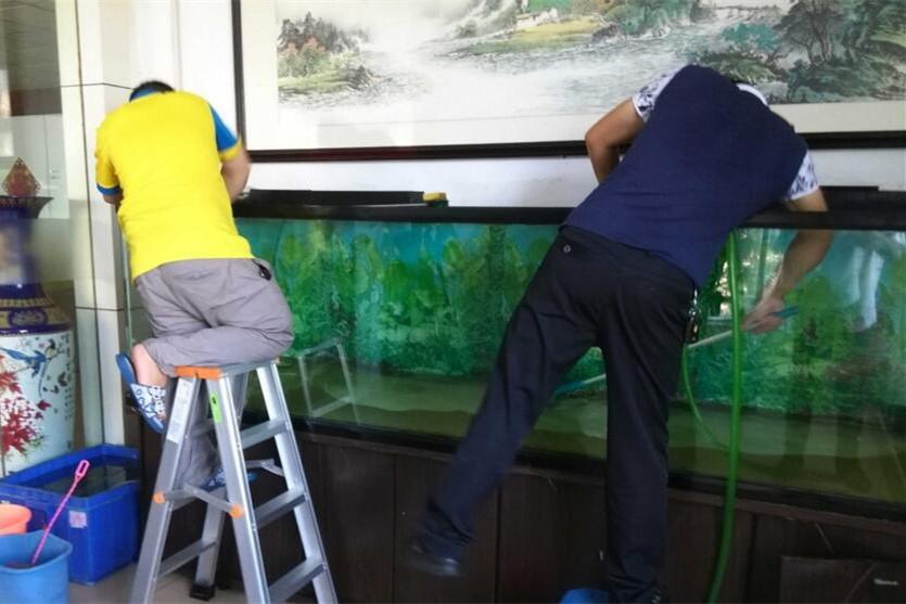 西安上门鱼缸清洗维护服务