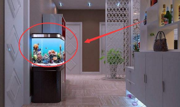 摆放鱼缸有什么禁忌