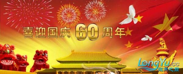 辉煌国【西安水族市场在哪里】庆60周年,共祝祖国繁荣昌盛 西安观赏鱼信息 西安博特第2张