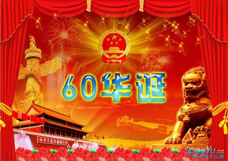 辉煌国【西安水族市场在哪里】庆60周年,共祝祖国繁荣昌盛 西安观赏鱼信息 西安博特第13张