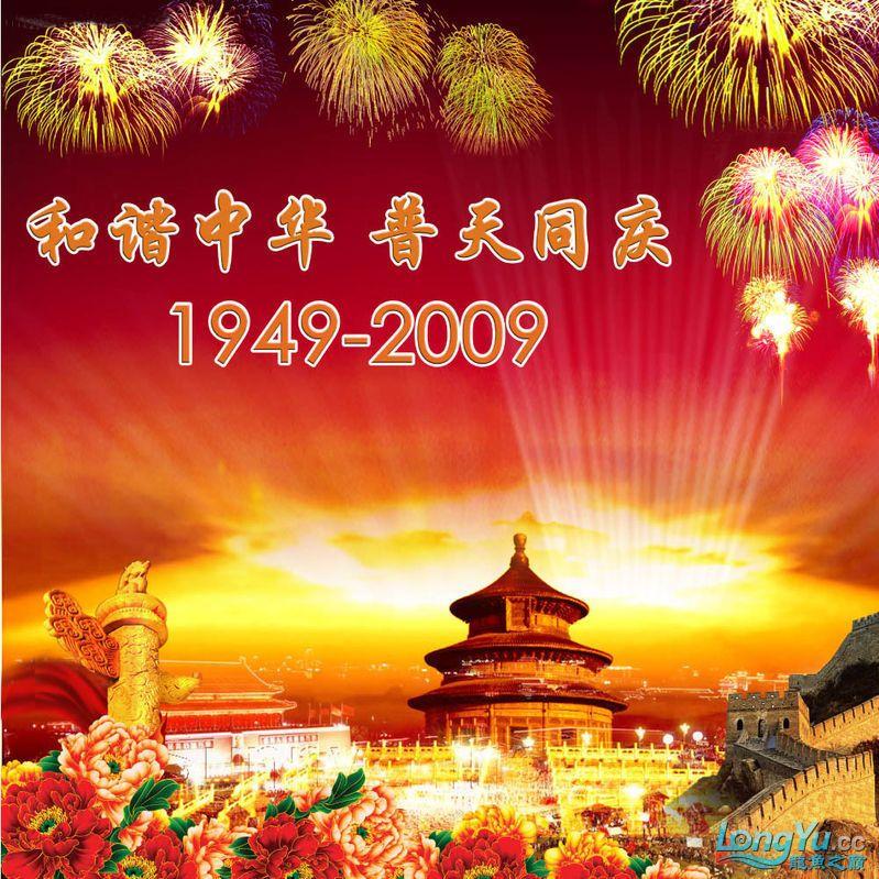 辉煌国【西安水族市场在哪里】庆60周年,共祝祖国繁荣昌盛 西安观赏鱼信息 西安博特第17张