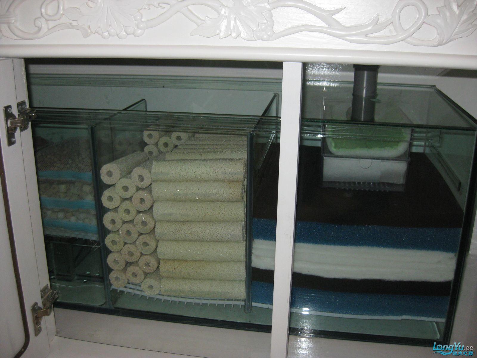 欧式超白玻璃鱼缸设计图纸200X70X100 西安观赏鱼信息 西安博特第7张