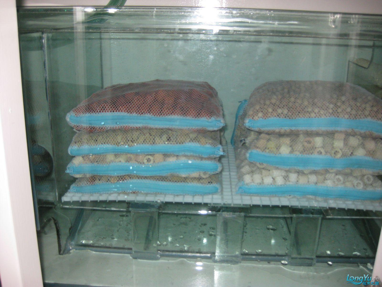 欧式超白玻璃鱼缸设计图纸200X70X100 西安观赏鱼信息 西安博特第8张