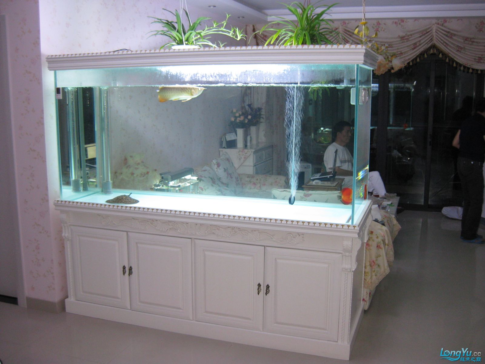 欧式超白玻璃鱼缸设计图纸200X70X100 西安观赏鱼信息 西安博特第9张