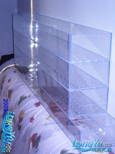 【西安哪家卖虎鱼】关于玻璃环与滴流过滤