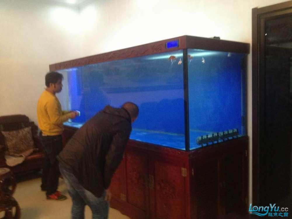 济南南部又一力作3米龙缸 西安观赏鱼信息 西安博特第2张