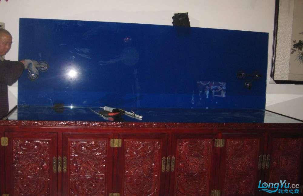 济南南部又一力作3米龙缸 西安观赏鱼信息 西安博特第7张