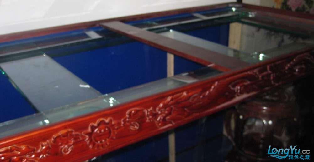 济南南部又一力作3米龙缸 西安观赏鱼信息 西安博特第10张