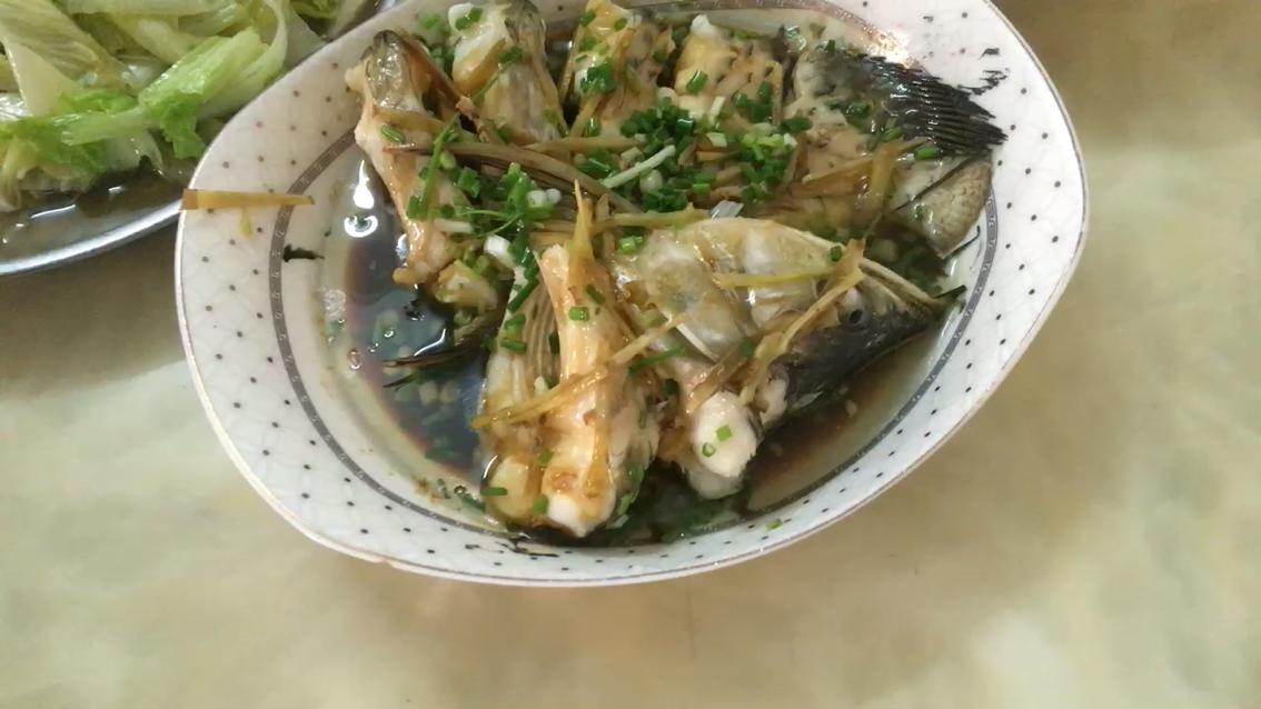 【西安皇冠黑白魟鱼】开饭了广西鱼友圈 西安观赏鱼信息