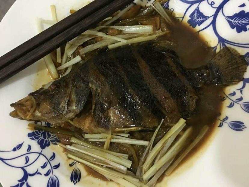 韭牙炒虎鱼【西安罗汉鱼】山东鱼友圈 西安观赏鱼信息