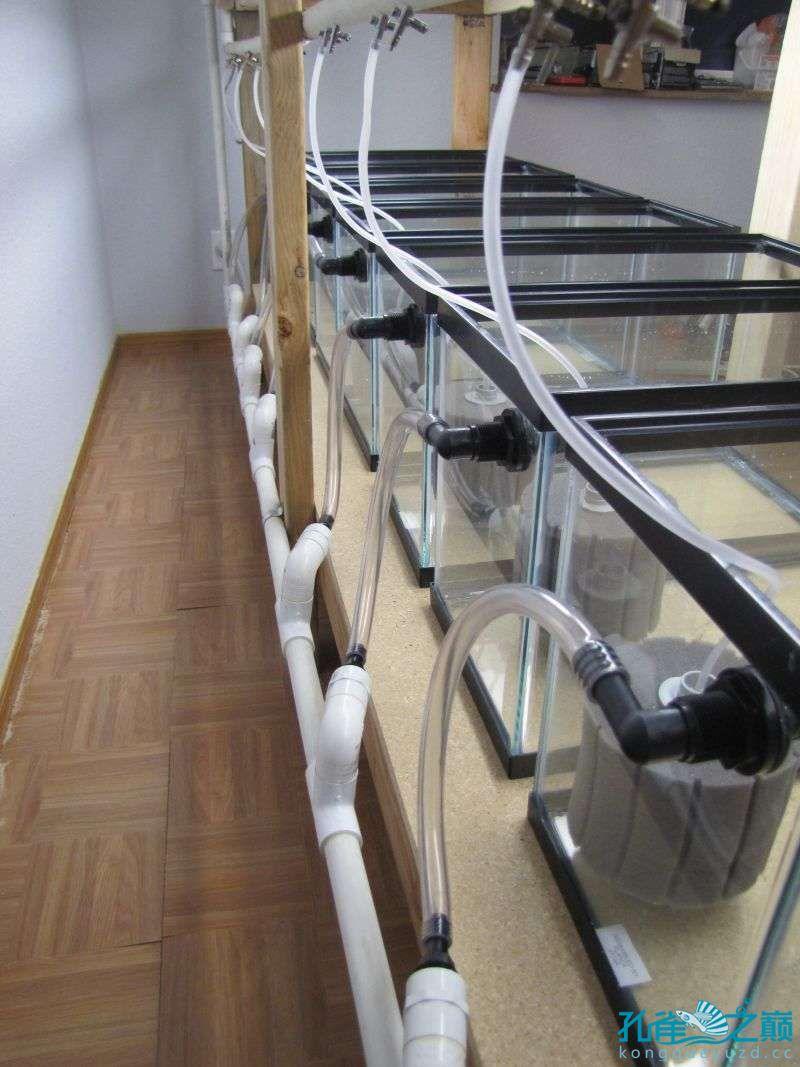 塑料系统缸细节 西安龙鱼论坛 西安博特第3张