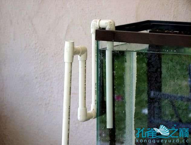 塑料系统缸细节 西安龙鱼论坛 西安博特第9张
