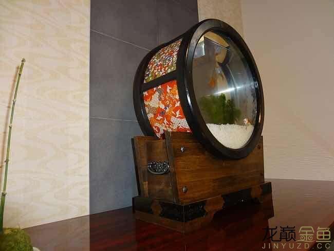 哪里能买到这样的金鱼缸 西安观赏鱼信息 西安博特第1张