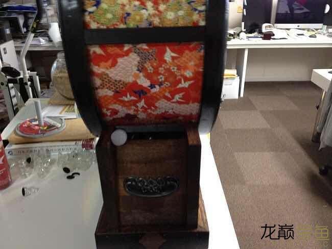 哪里能买到这样的金鱼缸 西安观赏鱼信息 西安博特第3张