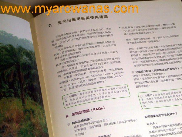 【西安细线银板鱼】雜圖 西安观赏鱼信息 西安博特第7张