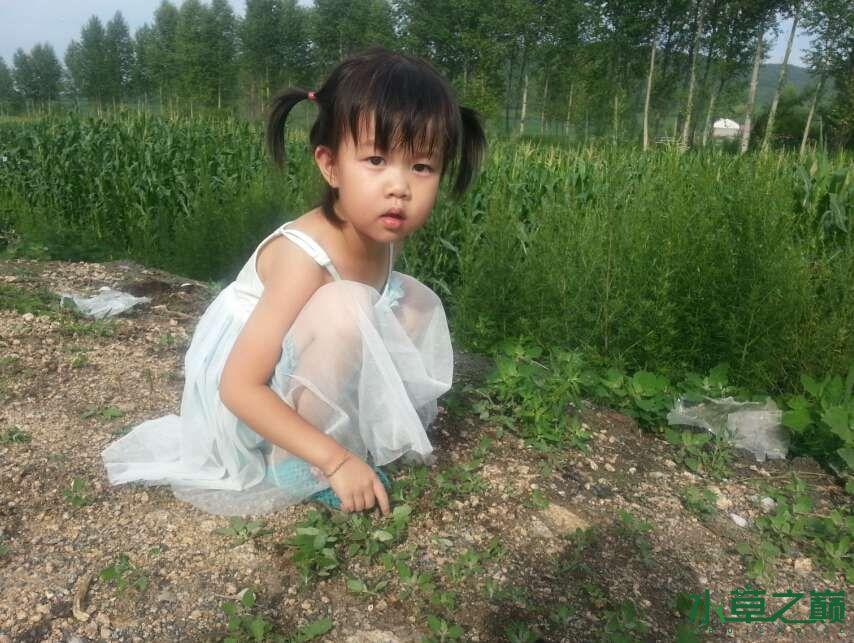 我心中的小苹果我的女儿朵朵