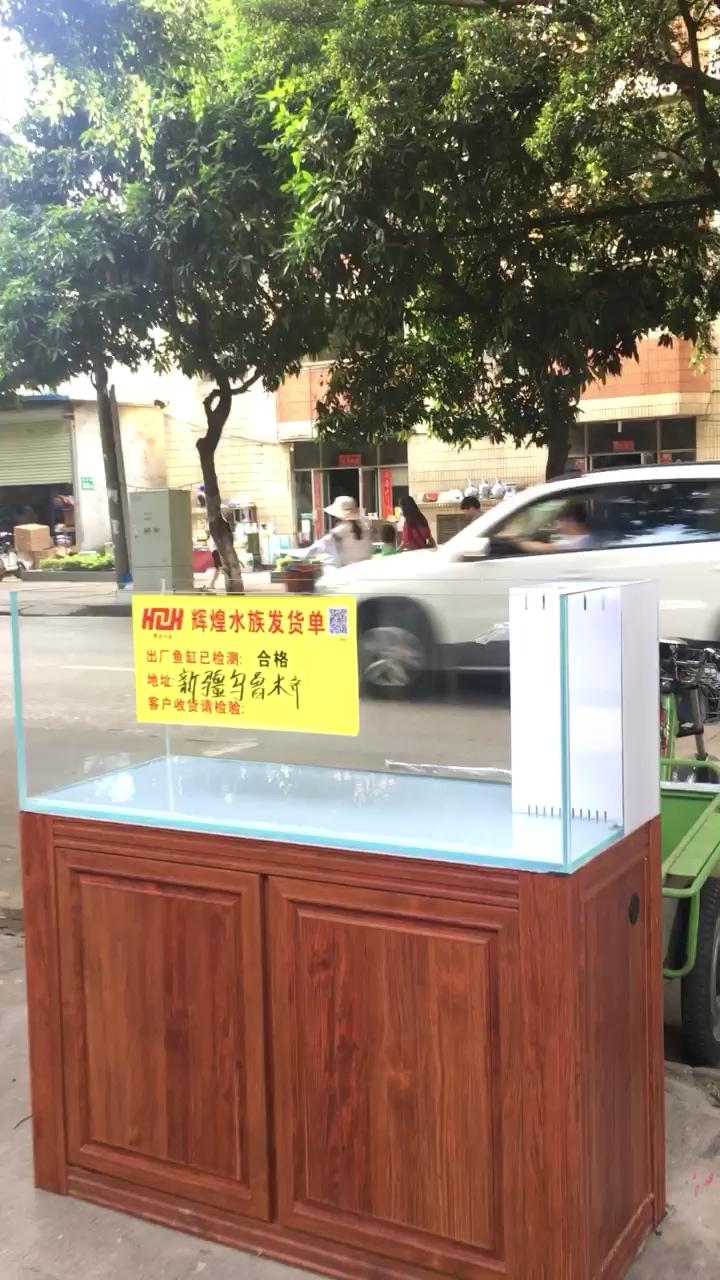 海水缸【西安纯血f1皇冠黑白魟鱼】系列商情 西安观赏鱼信息