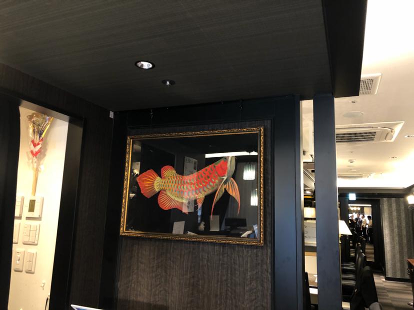 参观薛浩在日本银座的画作 西安龙鱼论坛 西安博特第1张