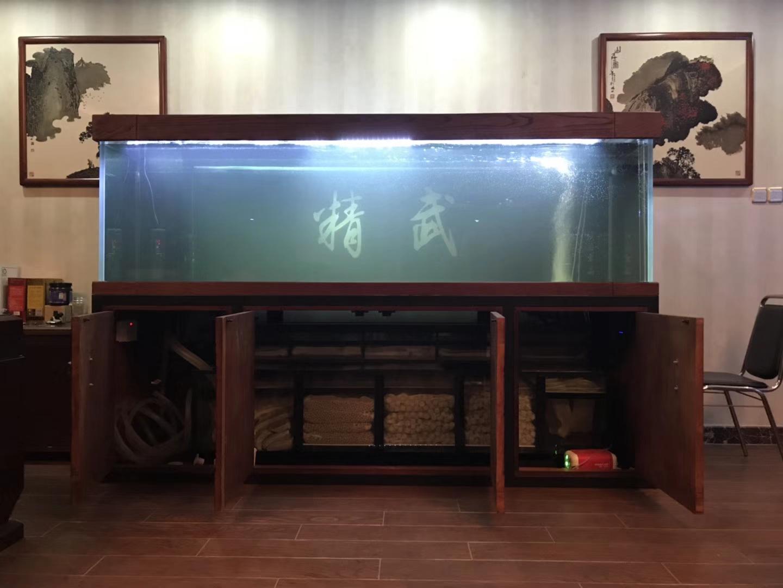 放水养鱼龙鱼 西安龙鱼论坛 西安博特第2张