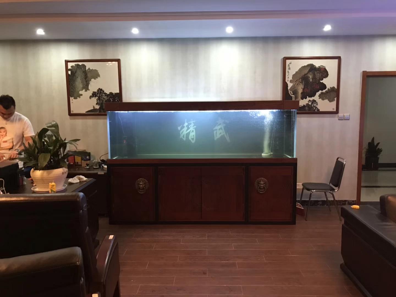 放水养鱼龙鱼 西安龙鱼论坛 西安博特第3张