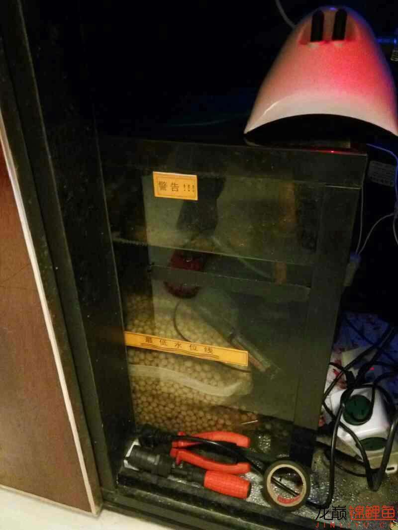 求滤材摆放顺序 西安观赏鱼信息 西安博特第2张