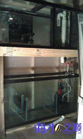 海水缸整体完工 西安观赏鱼信息 西安博特第4张