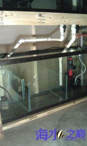 海水缸整体完工 西安观赏鱼信息 西安博特第6张