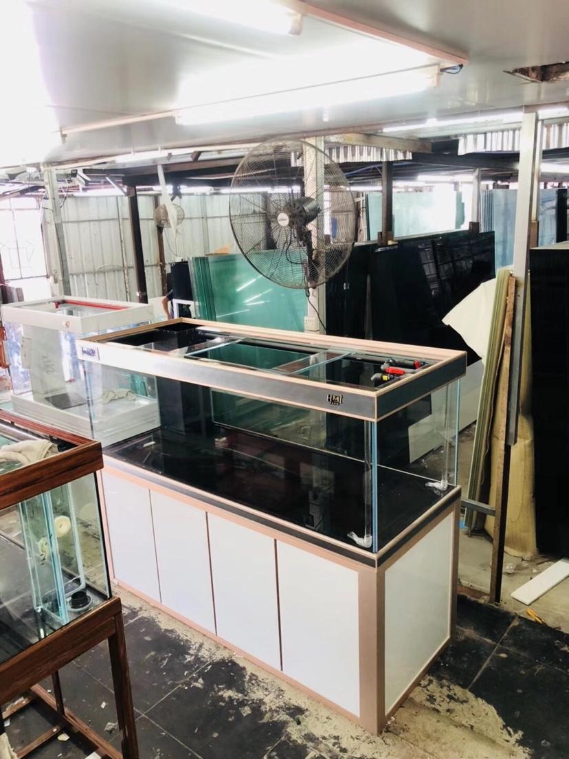 分享:厦门的速度 西安观赏鱼信息 西安博特第3张