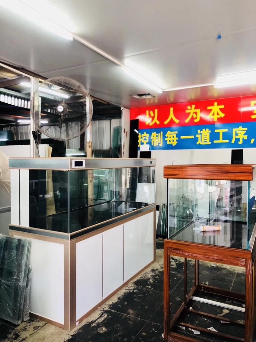 分享:厦门的速度 西安观赏鱼信息 西安博特第4张