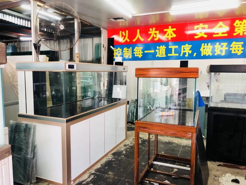 分享:厦门的速度 西安观赏鱼信息 西安博特第7张