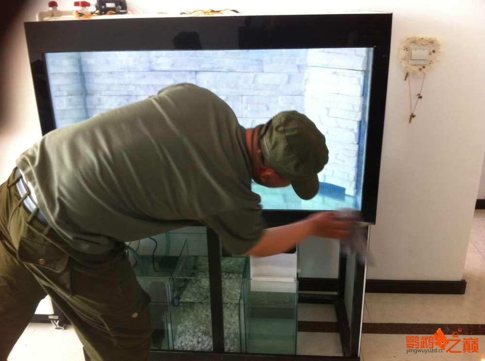 帮朋友DIY 2个小缸 刚完工12米x05米x06米高 西安龙鱼论坛 西安博特第7张