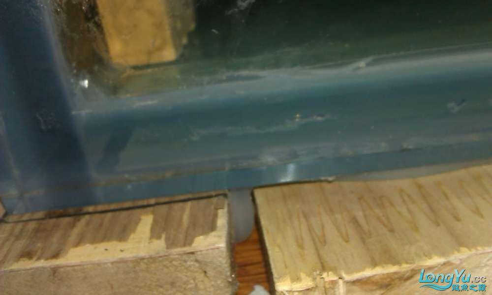 玻璃胶裂痕求助 西安龙鱼论坛 西安博特第1张