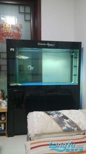 好朋友送的大家觉得我朋友怎么样? 西安观赏鱼信息 西安博特第1张