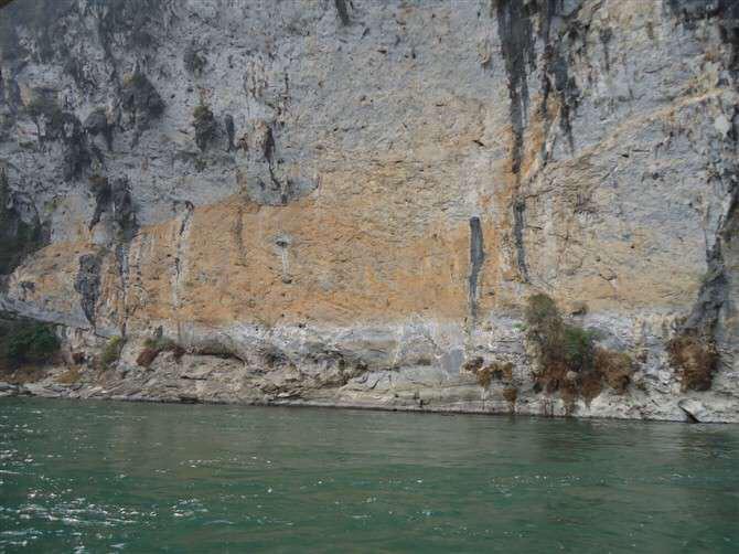史上最大的锦鲤 西安龙鱼论坛 西安博特第1张