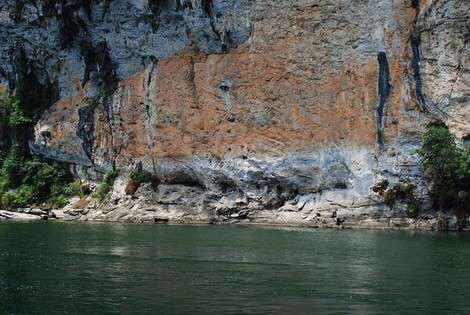 史上最大的锦鲤 西安龙鱼论坛 西安博特第2张