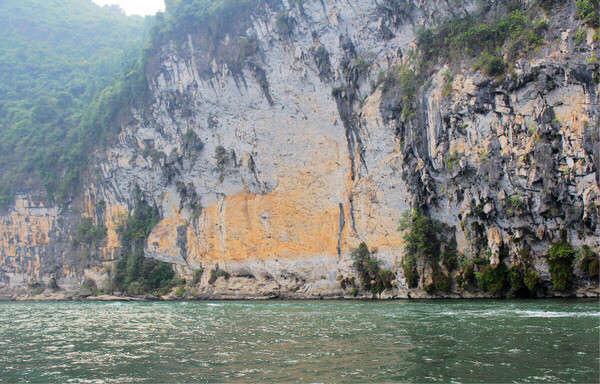 史上最大的锦鲤 西安龙鱼论坛 西安博特第3张