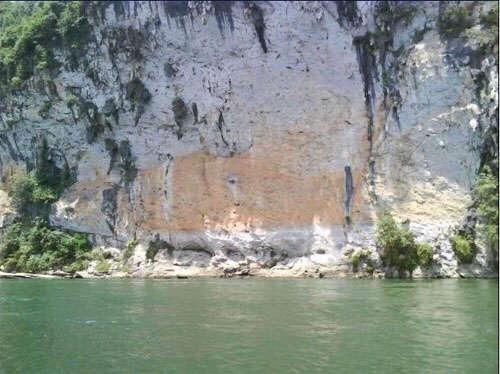 史上最大的锦鲤 西安龙鱼论坛 西安博特第5张