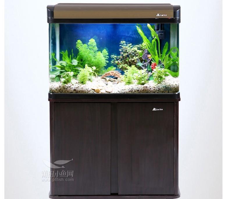【西安海水鱼】玻璃切割问题 西安观赏鱼信息