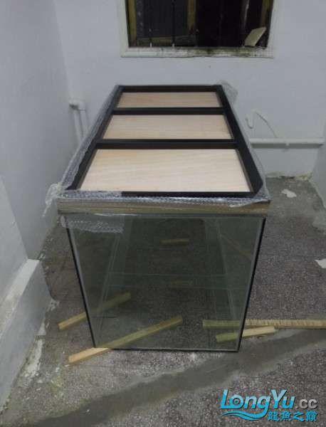 搞了个12670的龙缸够牢固的 西安观赏鱼信息 西安博特第3张