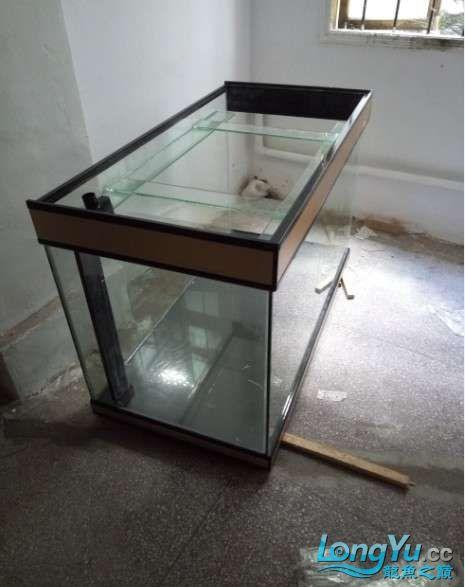 搞了个12670的龙缸够牢固的 西安观赏鱼信息 西安博特第4张