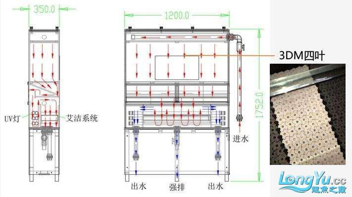 重磅出击艾洁百能系统将现身东莞锦鲤展 西安龙鱼论坛 西安博特第5张