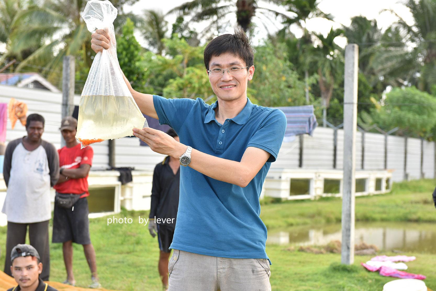 嗨我虽是杂文泰虎但也很多人喜欢我哟 西安观赏鱼信息 西安博特第4张