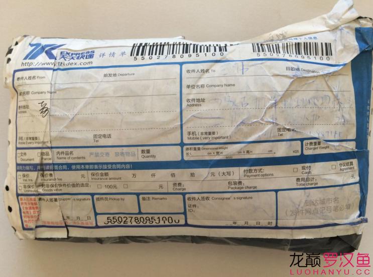 西安花批发市场春节福利罗师傅礼包收到 西安龙鱼论坛 西安博特第1张