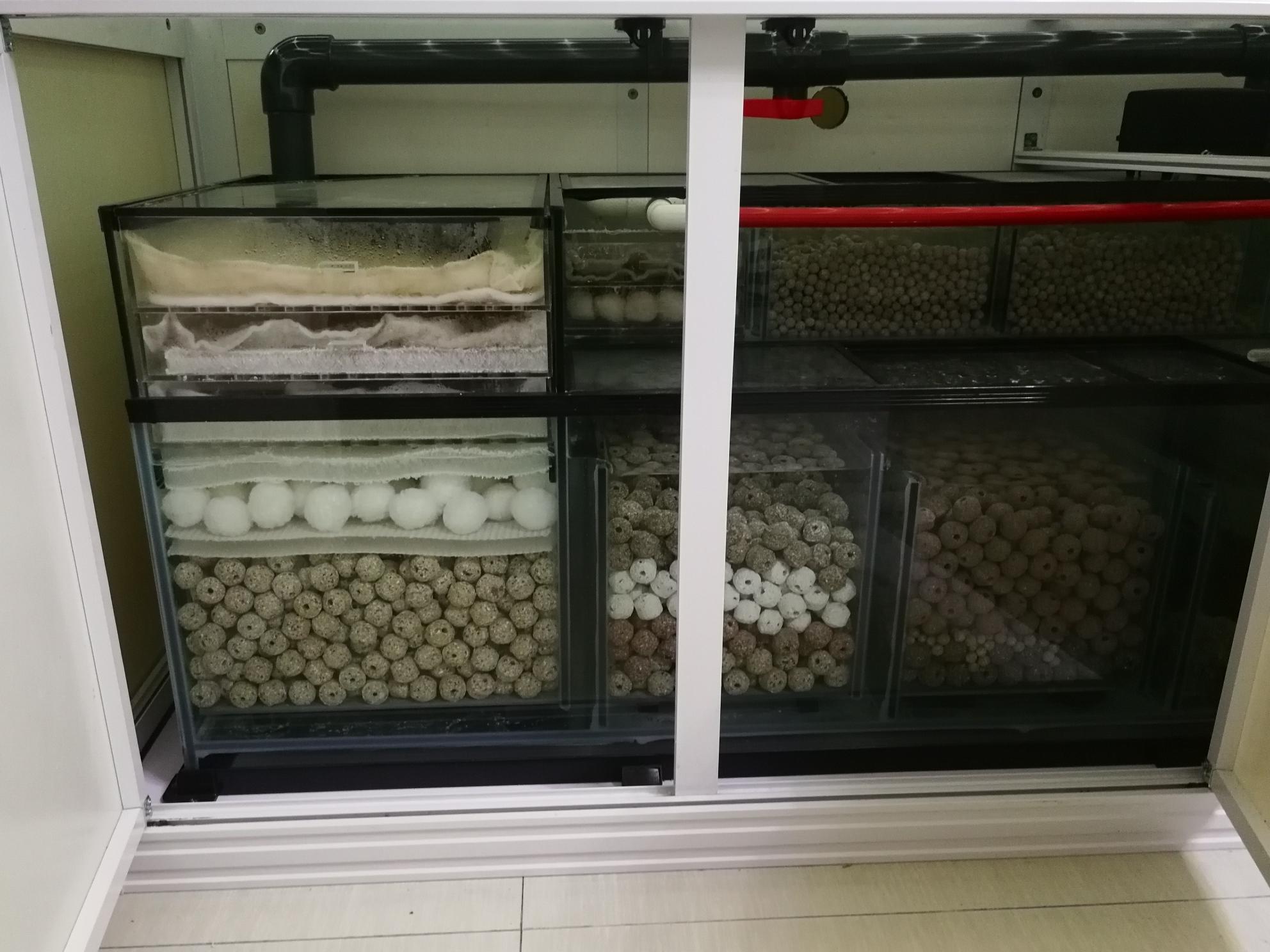 西安欢心甸市场动手制作干湿分离盖板 西安观赏鱼信息 西安博特第7张
