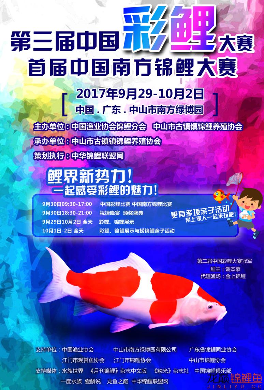 第三届中国彩鲤大赛 首届中国南方锦鲤大赛 西安龙鱼论坛 西安博特第2张