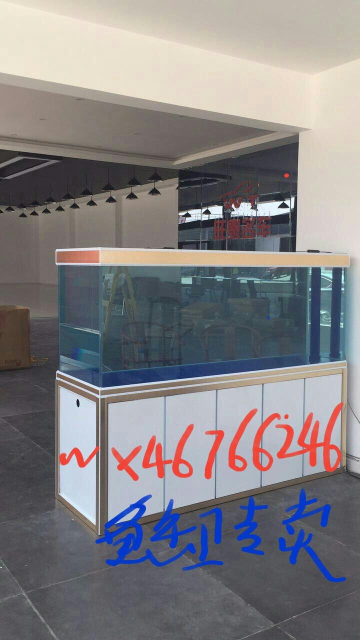 超白龙鱼鱼缸批发无溢流款龙鱼鱼缸定 西安龙鱼论坛 西安博特第1张