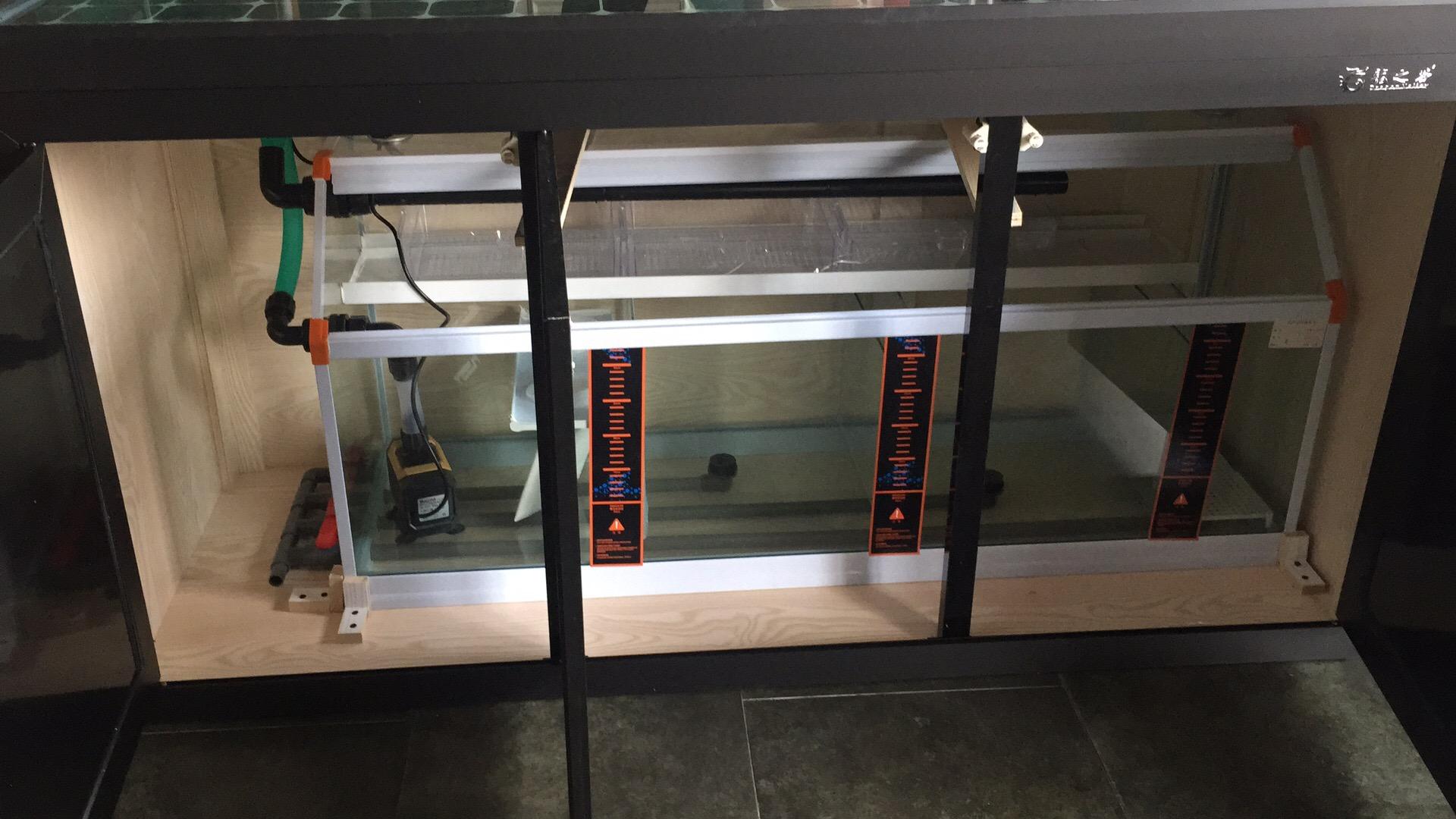 超白龙鱼鱼缸批发无溢流款龙鱼鱼缸定 西安龙鱼论坛 西安博特第6张