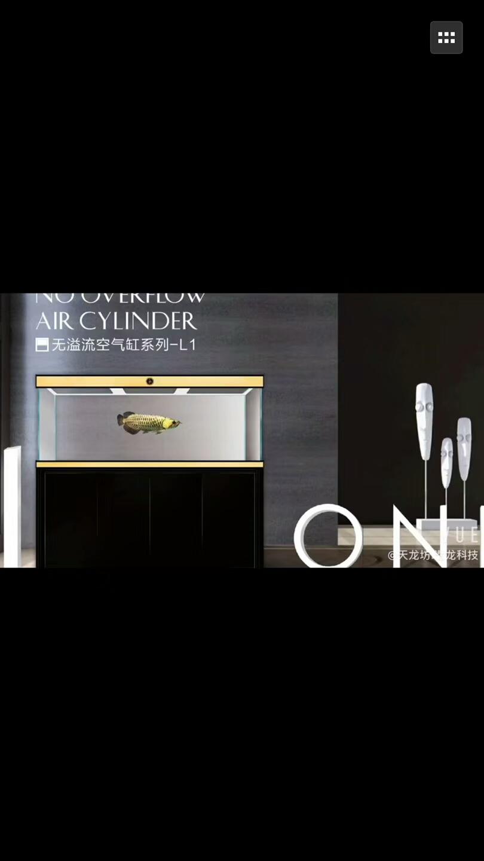 超白龙鱼鱼缸批发无溢流款龙鱼鱼缸定 西安龙鱼论坛 西安博特第9张