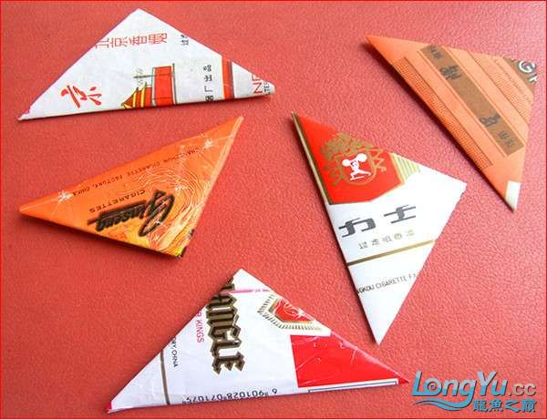 【西安伊巴卡鱼】大龄儿童也过儿童节叠烟盒摔三角 西安观赏鱼信息 西安博特第1张