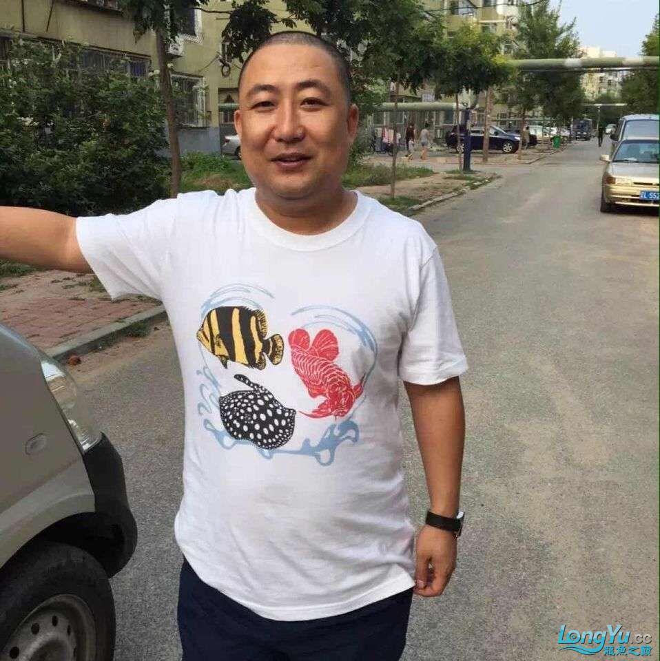 凡若一品的龙虎魟T恤收到了 西安观赏鱼信息